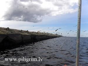 Мол с чайками в раоне гаваней Усть-Двинска.